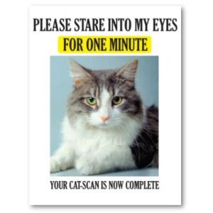 cat_scan_poster-p228187004761745174trma_400