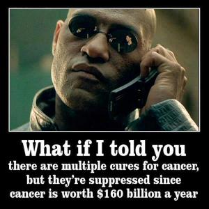 what-if-i-told-you-there-are-multiple-cures-for-cancer-but-theyre-suppressed-since-cancer-is-worth-160-billion-a-year